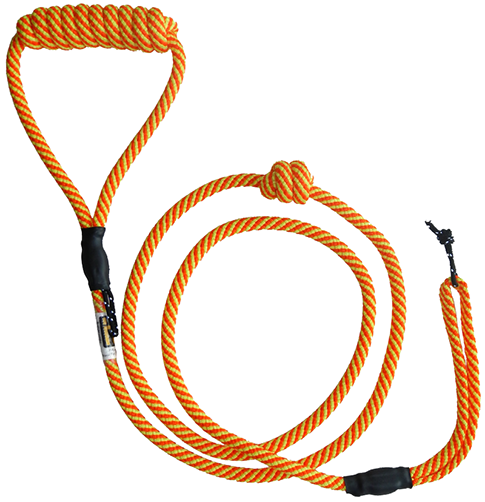 Orange H-Leash